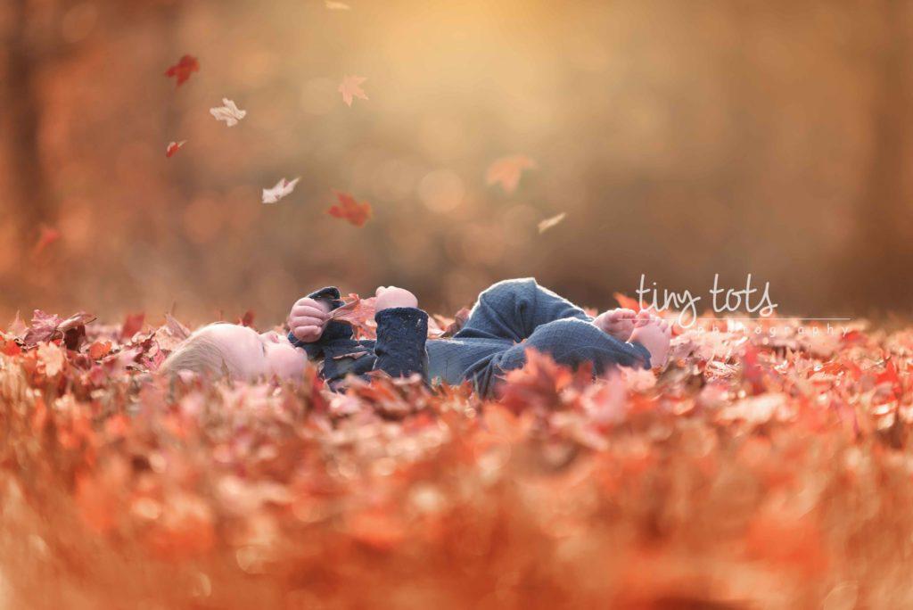 Fall Baby Photo Ideas