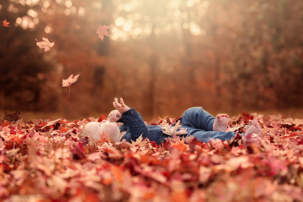 baby laying fall leaves watching leaves fall